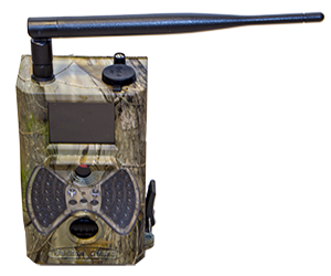 - Today there are several versions os Hunting cameras. We released a version with 1080p resolution several years ago, however not with 1920 but instead 1280. Today we can proudly promise true 1920 x 1080p at 30 FPS and at the same time take up to 5 pictures at 12 MP resolution. Our new ACQ-HUNTCAM-1080p-GPRS is today one of the most advanced automatic cameras system for wildlife photography. ACQ-HUNTCAM-1080p-GPRS can not only sned pictures over MMS but also e-mail video films in SVGA resolution. ACQ-HUNTCAM-1080p-GPRS can be strapped to a tree and film motion in front of the camera, regardless of day and night. At night is the built-in invisible IR-LED